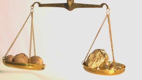 Βάρος μεταξύ των nutmegs και του χρυσού στο άσπρο υπόβαθρο απόθεμα βίντεο