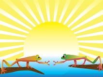 βάτραχος ζευγών διανυσματική απεικόνιση