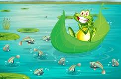 Βάτραχος και λίμνη Στοκ φωτογραφία με δικαίωμα ελεύθερης χρήσης