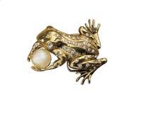 Βάτραχος με το μαργαριτάρι Στοκ Εικόνες