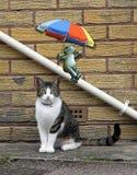 Βάτραχος με parasol ομπρελών που γλιστρά κάτω από το σωλήνα αποχέτευσης και γάτα που θέτει το πορτρέτο διανυσματική απεικόνιση
