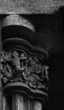 Βάτραχος στο κεφάλαιο Στοκ εικόνες με δικαίωμα ελεύθερης χρήσης