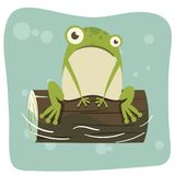Βάτραχος στο κούτσουρο Στοκ φωτογραφία με δικαίωμα ελεύθερης χρήσης
