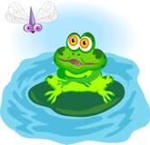 βάτραχος διανυσματική απεικόνιση
