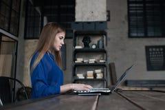 Βέβαια συγκεντρωμένη νέα γυναίκα που εργάζεται στο lap-top καθμένος στο δημιουργικό εστιατόριο στοκ φωτογραφίες