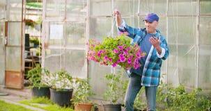 Βέβαιος αρσενικός κηπουρός γεωργίας που εξετάζει τις σε δοχείο εγκαταστάσεις λουλουδιών απόθεμα βίντεο