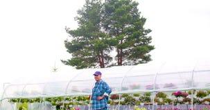 Βέβαιος αρσενικός κηπουρός που εξετάζει τις σε δοχείο εγκαταστάσεις λουλουδιών φιλμ μικρού μήκους