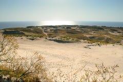 βήματα άμμου της Ρωσίας kurshskaya kosa οριζόντων αμμόλοφων που τεντώνουν Στοκ φωτογραφίες με δικαίωμα ελεύθερης χρήσης