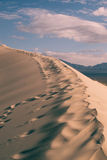 βήματα άμμου της Ρωσίας kurshskaya kosa οριζόντων αμμόλοφων που τεντώνουν Στοκ εικόνες με δικαίωμα ελεύθερης χρήσης