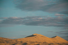 βήματα άμμου της Ρωσίας kurshskaya kosa οριζόντων αμμόλοφων που τεντώνουν στοκ εικόνα