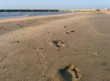 Βήματα άμμου Στοκ Εικόνες