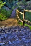 βήματα κάστρων Στοκ Φωτογραφία