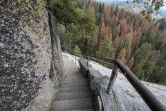 Βήματα και σκαλοπάτια κατά μήκος του πεζοπορώ βράχου Moro Sequoia στο εθνικό πάρκο στοκ φωτογραφίες με δικαίωμα ελεύθερης χρήσης