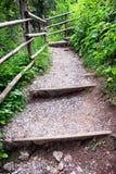 βήματα ξύλινα Στοκ φωτογραφίες με δικαίωμα ελεύθερης χρήσης
