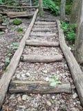 βήματα ξύλινα Στοκ Φωτογραφίες
