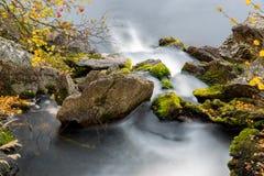 Βήματα ποταμών Στοκ Εικόνες