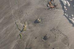 Βήματα ποδιών στην άμμο Στοκ Φωτογραφία