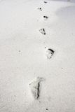 Βήματα στην άμμο Στοκ Εικόνα
