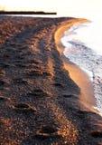 Βήματα στην παραλία στοκ εικόνες