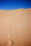 Βήματα στους αμμόλοφους άμμου Στοκ Φωτογραφία