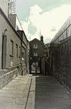 Βήματα του Castle - Δουβλίνο Στοκ εικόνες με δικαίωμα ελεύθερης χρήσης