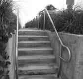 Βήματα τσιμέντου με την ψηλή χλόη Στοκ Εικόνες