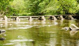 Βήματα Exmoor Tarr Στοκ Εικόνα