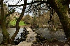 Βήματα Tarr στο Devon στοκ εικόνα με δικαίωμα ελεύθερης χρήσης