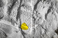 Βήμα με τη χρυσή καρδιά στην παραλία Στοκ Εικόνα