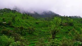 Βήμα που καλλιεργεί στα βουνά Himalayan σε Uttarakhand, Ινδία Στοκ Φωτογραφίες