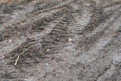 Βήμα ροδών των ροδών αυτοκινήτων στη λάσπη Στοκ Φωτογραφία