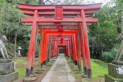 Βήμα Φουκουόκα Ιαπωνία Torii Στοκ Φωτογραφίες