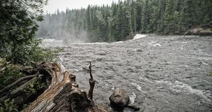 Βίαιος ποταμός στο δασικό έπειτα καταρράκτη στοκ φωτογραφία με δικαίωμα ελεύθερης χρήσης