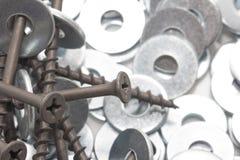 βίδες καρυδιών Μακροεντολή Στοκ φωτογραφίες με δικαίωμα ελεύθερης χρήσης