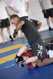 βίλα πάρκων jiu jitsu Στοκ φωτογραφίες με δικαίωμα ελεύθερης χρήσης