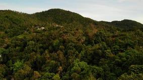 Βίλες στην πράσινη κορυφογραμμή βουνών Μεγαλοπρεπής άποψη κηφήνων των βιλών πολυτέλειας που βρίσκονται στην πράσινη σειρά βουνών  φιλμ μικρού μήκους