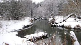 Βίντεο λιμνών χειμερινών ποταμών πιό forrest απόθεμα βίντεο