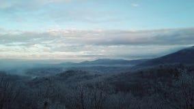 Βίντεο που πετά μέσω των δέντρων πέρα από τα της όξινης απορροής βουνά στην υδρονέφωση ξημερωμάτων απόθεμα βίντεο