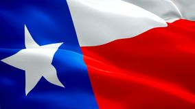 Βίντεο σημαιών του Τέξας που κυματίζει στον αέρα Ρεαλιστικό υπόβαθρο  ελεύθερη απεικόνιση δικαιώματος