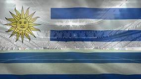 Βίντεο σημαιών Agentina απόθεμα βίντεο