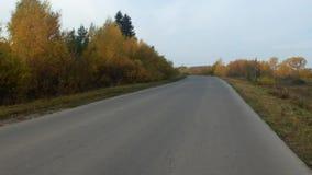 Βίντεο της κενής εθνικής οδού, δέντρα απόθεμα βίντεο