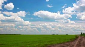 Βίντεο του πράσινων τομέα και του μπλε ουρανού φιλμ μικρού μήκους