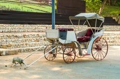 Βαγόνι εμπορευμάτων μεταφορών ή αλόγων χωρίς το άλογο Στοκ φωτογραφία με δικαίωμα ελεύθερης χρήσης