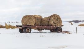 Βαγόνι εμπορευμάτων σανού Στοκ εικόνες με δικαίωμα ελεύθερης χρήσης