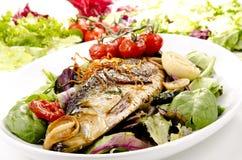 βαθιά θάλασσα πιάτων Στοκ Εικόνες