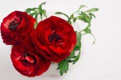 Βαθιά - κόκκινη κινηματογράφηση σε πρώτο πλάνο ανθοδεσμών τριών λουλουδιών στο άσπρο ξύλινο υπόβαθρο Εορταστικό θερινό σκηνικό στοκ φωτογραφία με δικαίωμα ελεύθερης χρήσης
