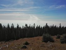 Βαθιά ομίχλη Στοκ εικόνες με δικαίωμα ελεύθερης χρήσης