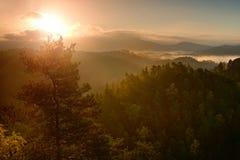 Βαθιά misty κοιλάδα μέσα στη χαραυγή Ομιχλώδες και misty πρωί στο λοφώδες σημείο άποψης Στοκ Φωτογραφία