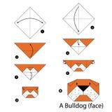 Βαθμιαία οδηγίες πώς να κάνει το μπουλντόγκ origami Στοκ Εικόνες