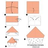 Βαθμιαία οδηγίες πώς να κάνει το origami ένα θωρακικό καρύδι Στοκ Εικόνες